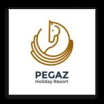 Carosel-Clients-Logos_Pegaz